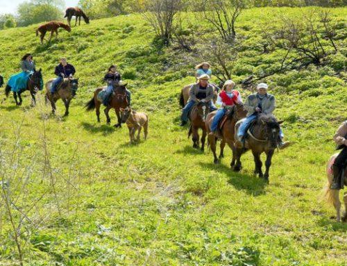 Конные прогулки для группы в Сочи